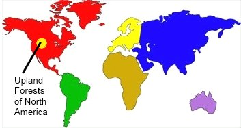 Map - where did they l...