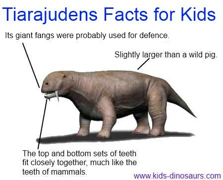 Tiaruajuden Dinosaur facts for kids
