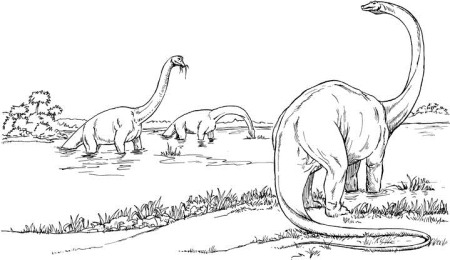 herbivore dinosaur coloring pages - photo#33