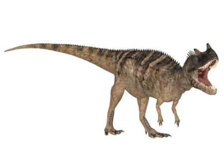 Ceratosaurus Dinosaur picture