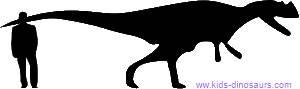 Size of Ceratosaurus dinosaur