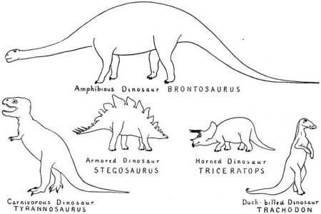 dinosaur coloring pages different types