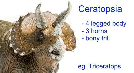 Dinosaur Classification - Ceratopsia
