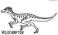 velociraptor coloring pages - dinosaur coloring