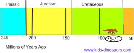 Protoceratops timeline - when did they live