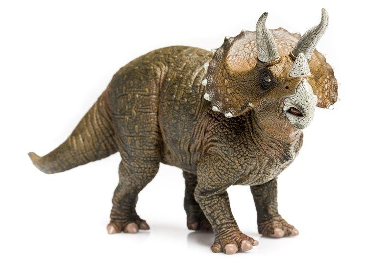 Triceratops Dinosaur Showing Mouth-Dino Park Praha-Czech ... |Triceratops Dinosaur