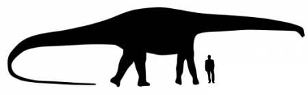 Diplodocus Dinosaur Size