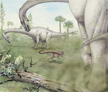 Dreadnoughtus Dinosaur Picture