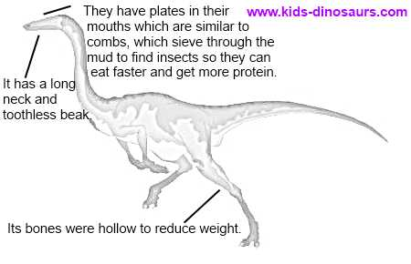 Gallimimus facts for kids