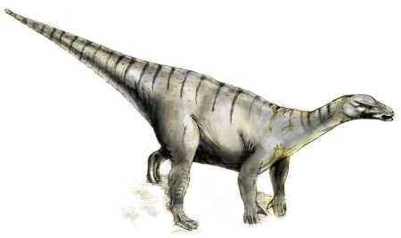 Iguanodon dinosaur