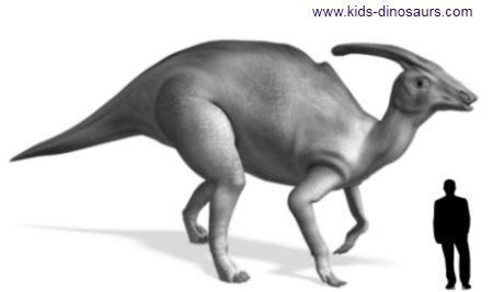 Triceratops Dinosaur Size