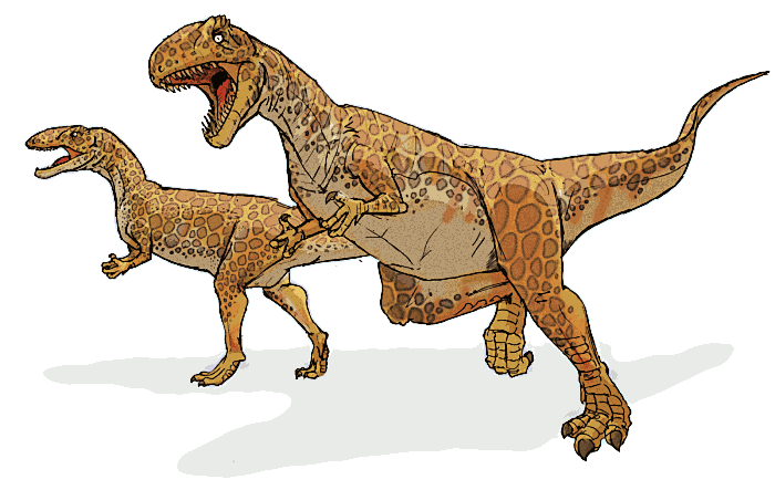 Pictures of Dinosaurs - Megalosaurus