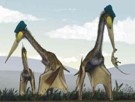 Quetzalcoatlus - an artists impression of them standing on their wings