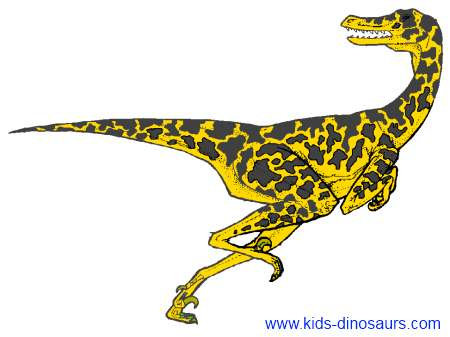 Velociraptor Quick Facts Velociraptors - Facts ...