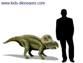 Protoceratops Size - how big was this dinosaur