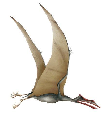 Quetzalcoatlus Flying Reptile
