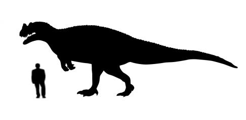 Albertosaurus Dinosaur Size