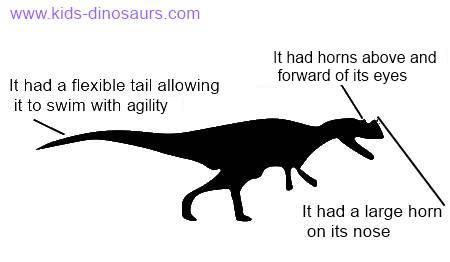 Ceratosaurus Kids Facts