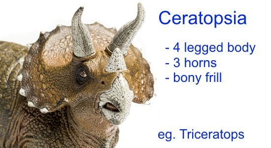 Different Types of Dinosaurs - Ceratopsia
