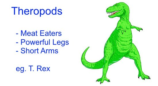 Different Types of Dinosaurs - Theropods