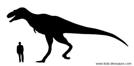 Dinosaur T Rex Size - Size of Tyrannosaurs Rex