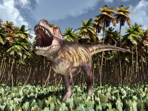 Image result for The Dinosaur - T-Rex