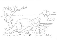 Dinosaurs Triceratops coloring sheet 2