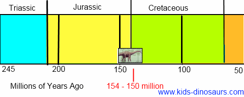 Diplodocus Dinosaur Timeline
