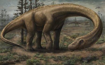 Long Neck Dinosaur