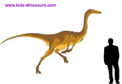 How big was Gallimimus