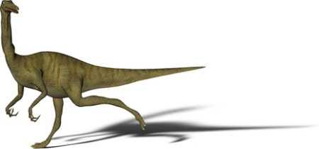 Gallimimus Dinosaur for Kids
