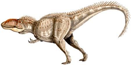 Giganotosaurus Dinosaur - pictures for kids