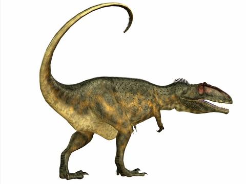 Dinosaurs - Giganotosaurus