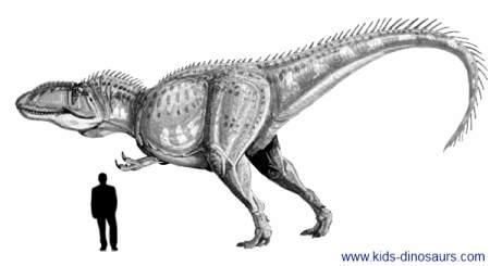 Giganotosaurus Dinosaur Size