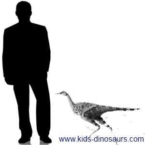 Linhenychus  - New Dinosaur Size