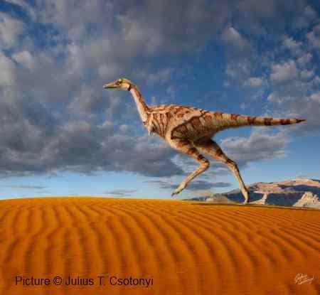 Linhenychus Dinosaur - New Dinosaur Discovery