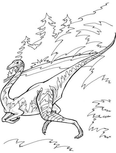 ornithomimus dinosaur