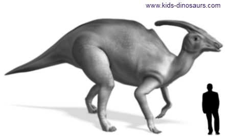 Triceratops Dinosaur Size