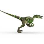 Pictures of Dinosaurs - Velociraptor