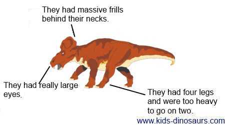 Protoceratops Facts for Kids