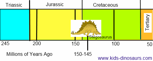 Stegosaurus Dinosaur - Facts and Information for Kids